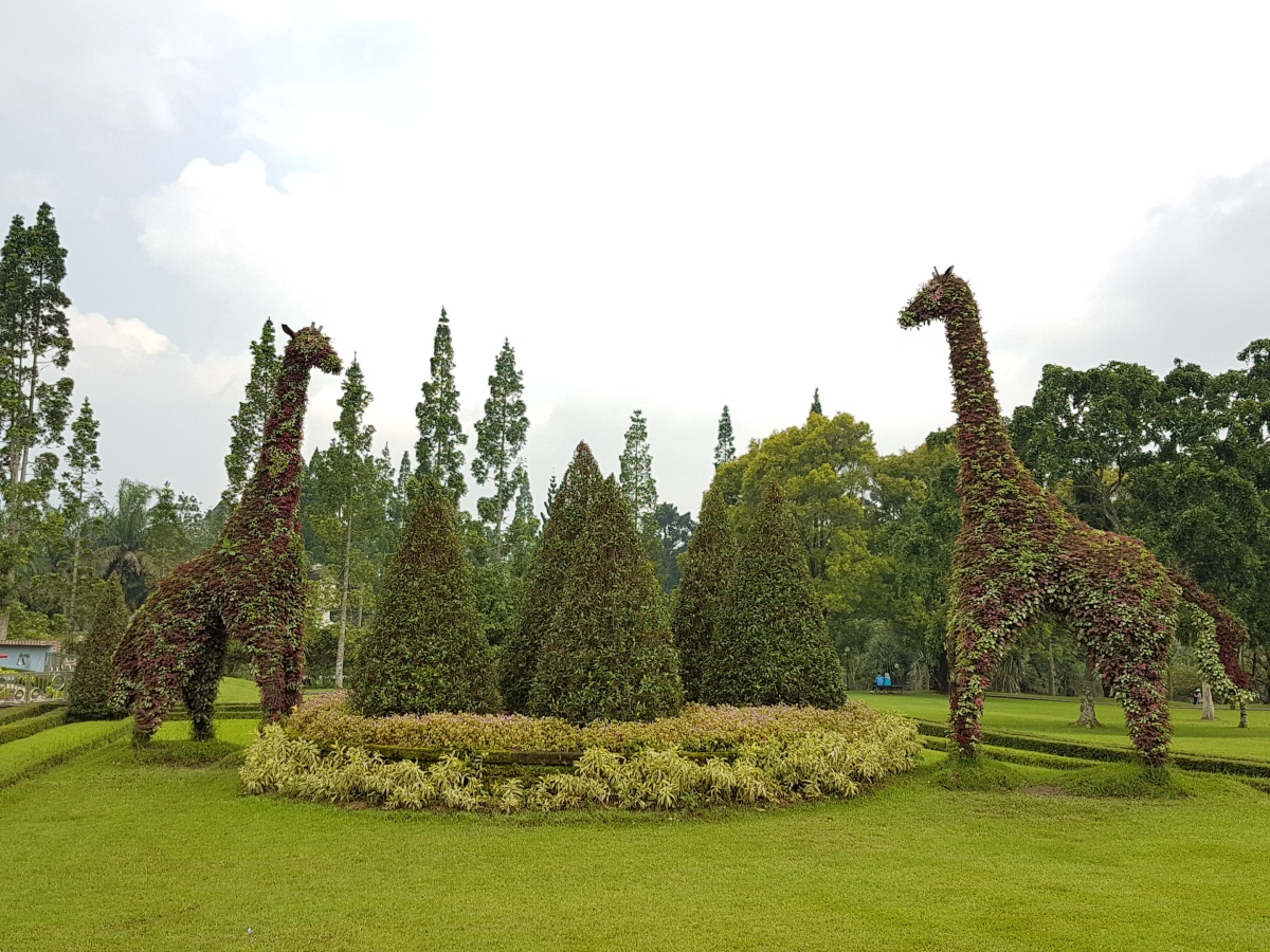 Indahnya Taman Bunga Nusantara Cianjur