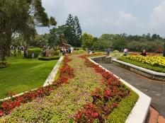 Kolam Air mancur-taman bunga nusantara