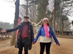 central korean pine tree lane
