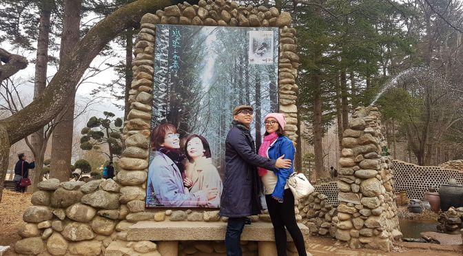 Liburan Babymoon ke Seoul, Korea Part 2 (Tips travelling ke Nami Island )