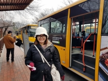 Bus Namsan Tour