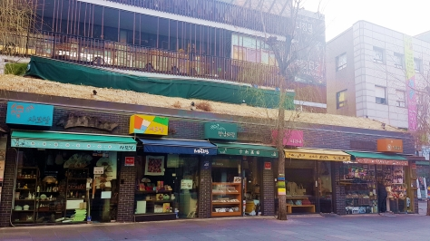 yuditika seoul korea28